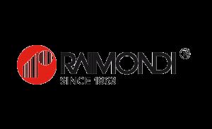 LOGO-WEB-RAIMONDIre